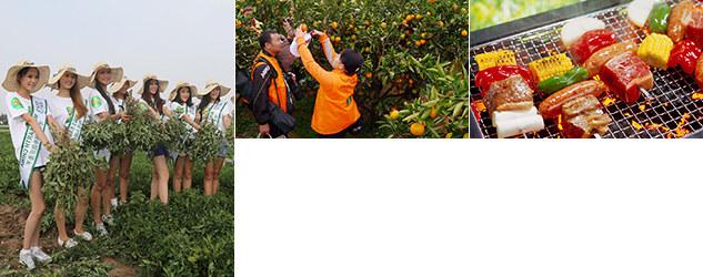 靈禾農業生態園拓展訓練基地
