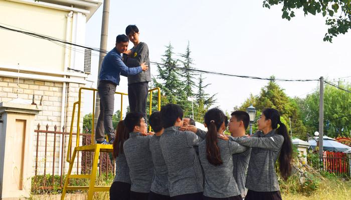 拓展训练携手走向成功|拓展,拓展培训,上海拓展,拓展培训,拓展活动,