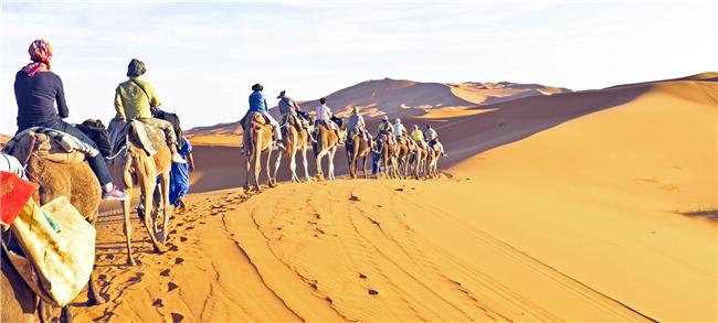 公司户外团建活动项目::沙漠掘金,高端团建公司活动方案|