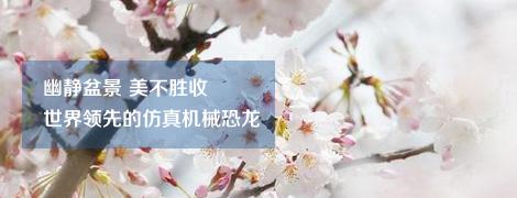 上海濱海森林公園拓展訓練基地,專業拓展培訓基地,上海十佳休閑新景點,全國卡丁車A級賽車道,打造水上步行街,森林浴療區,首家星級旅游涉外賓館,4