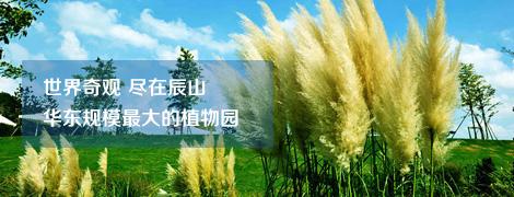 上海辰山植物園拓展培訓基地,CS激光野戰基地,最具創意的拓展基地,中心展示區.植物保育區,五大洲植物區和外圍緩沖區,盲人植物園,酒店后花園,5